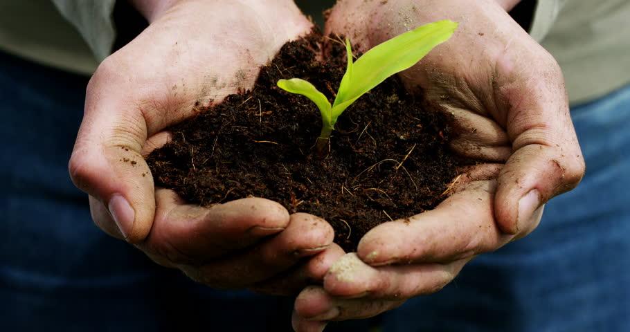 ทำเกษตรอินทรีย์แนวใหม่