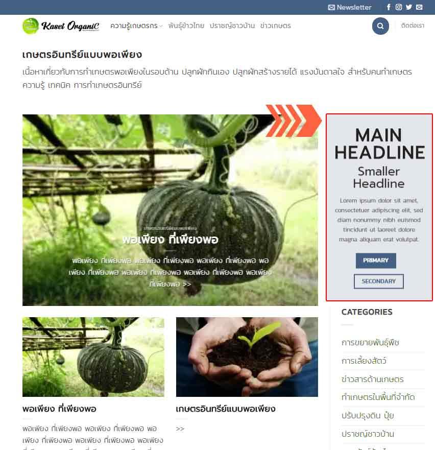 ตำแหน่งป้ายโฆษณา เว็บเกษตรอินทรีย์