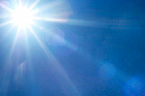 แสงแดดมีผลต่อการงอกของเห็ดฟาง