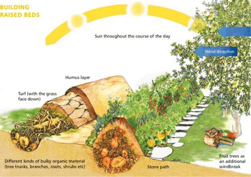 การทำเกษตรบนคันดิน Hugelkultur